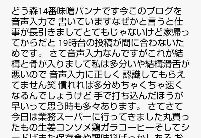 f:id:okabe-haruka:20210419201155j:plain