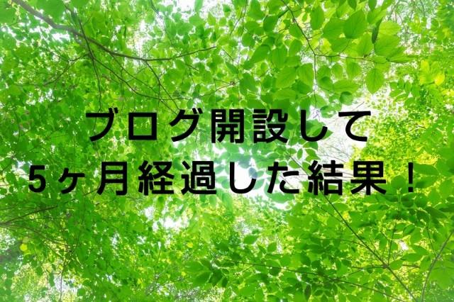 f:id:okabe-haruka:20210728183103j:plain