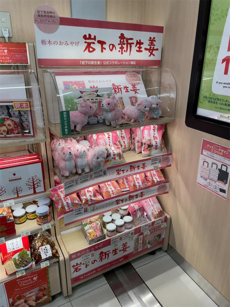 f:id:okachimachi_junktion:20210224195349j:image