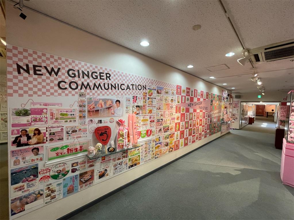 f:id:okachimachi_junktion:20210224213756j:image