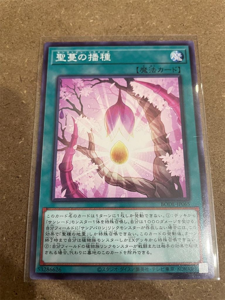 f:id:okachimachi_junktion:20210717212819j:image