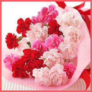 姪からのお洒落な花のメール便