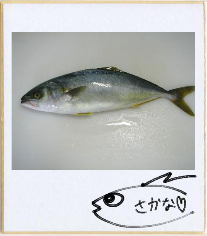 f:id:okamiwa26:20160819165517p:plain