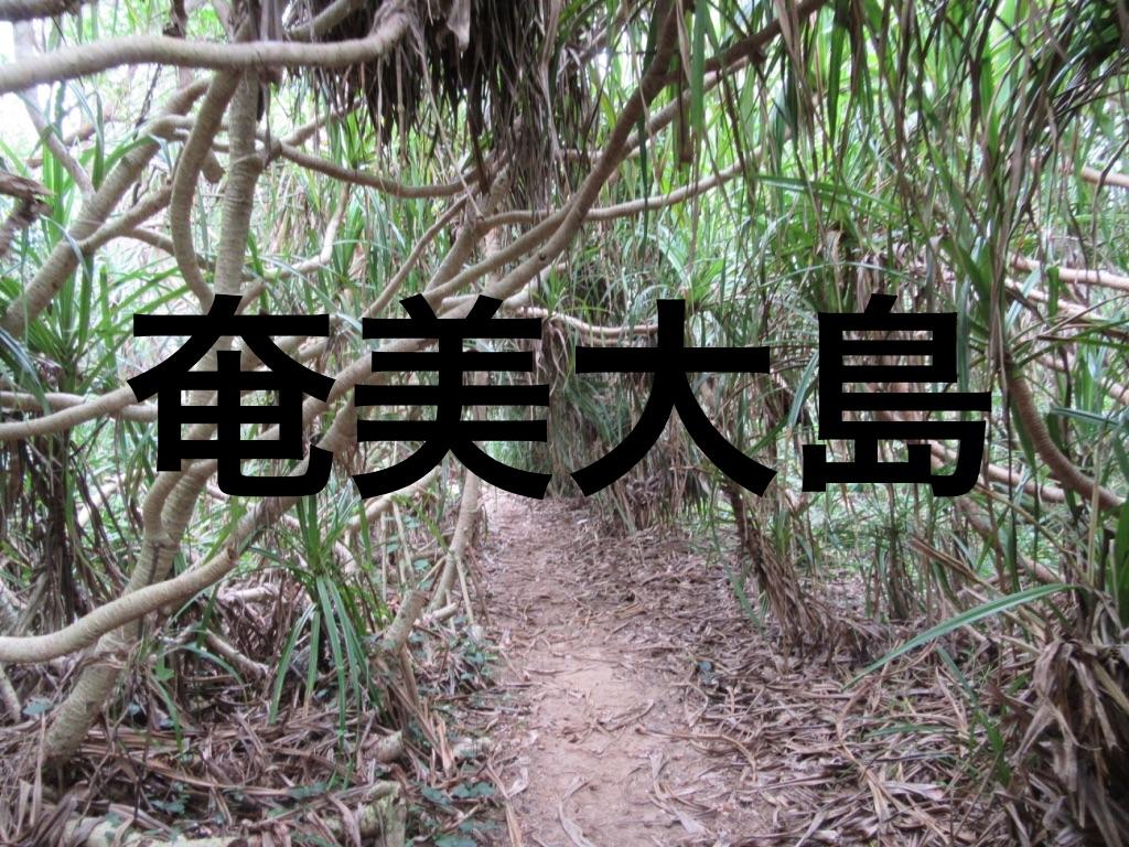 f:id:okamurauchino:20180305001629j:plain