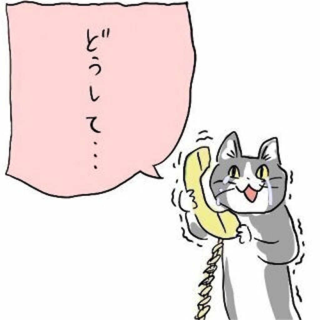 f:id:okasyo_0209:20201214114124j:image