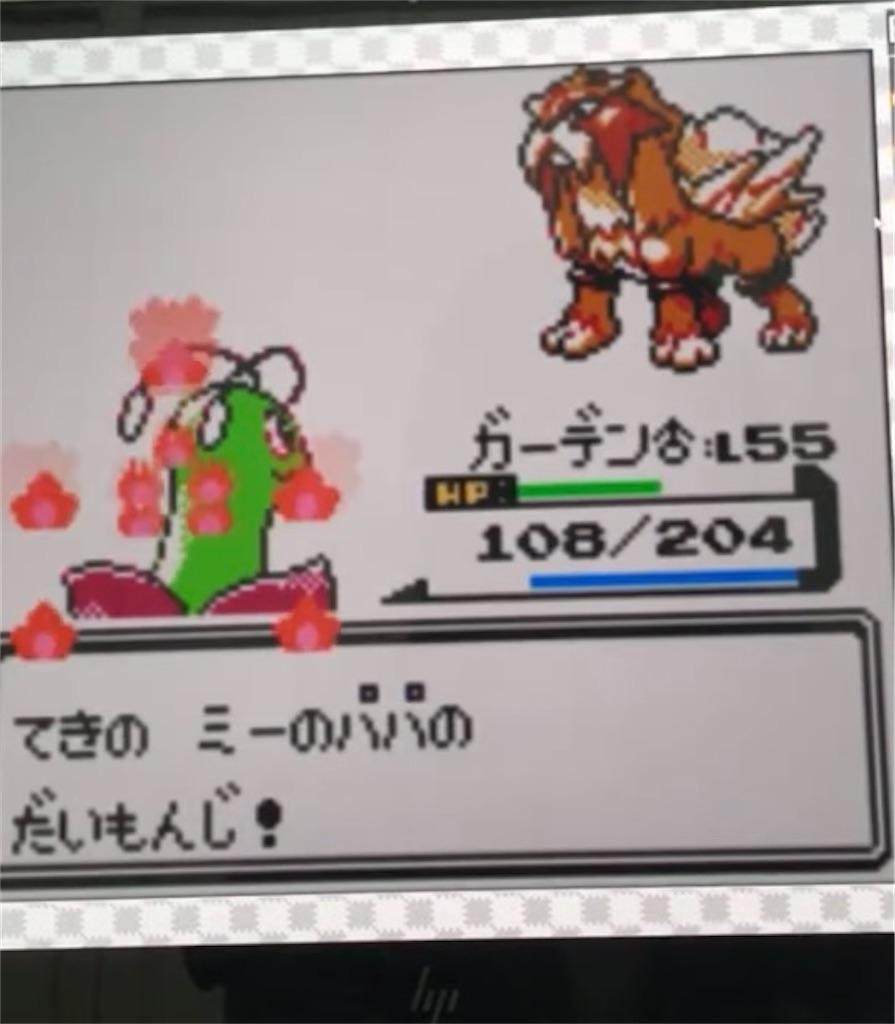 f:id:okasyo_0209:20210524000235j:image