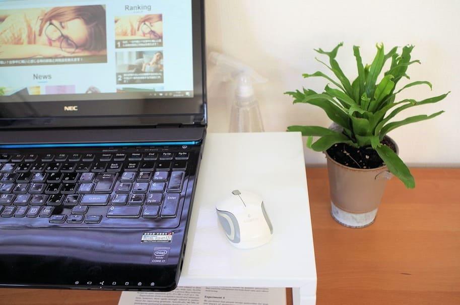 「緑」を取り入れて癒される!職場で楽しむ観葉植物、賢く選ぶコツは?