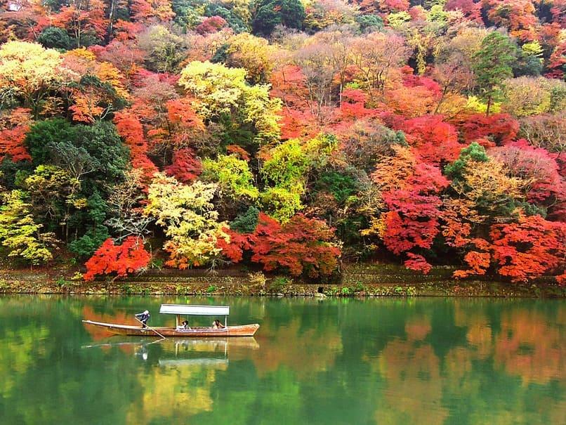 紅葉で1番人気の都道府県は?2位 栃木県、3位 愛知県をおさえた1位は…