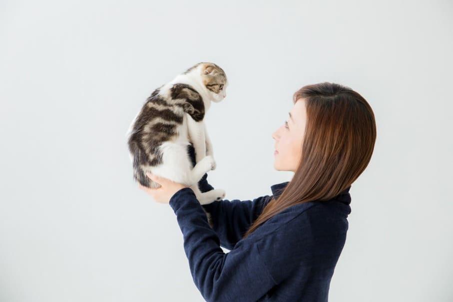 動物好きにおすすめ!ペットシッターで副業をする方法