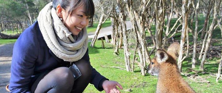 オタク女子ライターが傷心旅行先のオーストラリアで見つけた「働く女の幸せ」