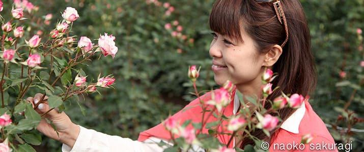 幸せを連鎖させる「アフリカローズ」 バラとの出会いで咲かせた新たなキャリア