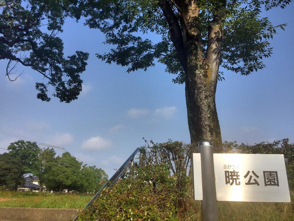 f:id:okazaki_kanko:20190812151934j:plain