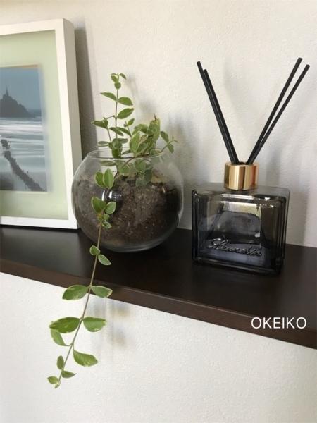 f:id:okeiko-life:20180702220436p:plain