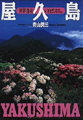 以前はお花畑がチベットの始まりだったが2