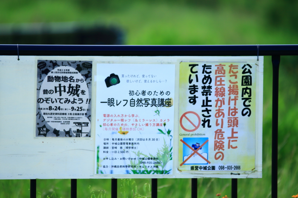 f:id:oki-umeboshi:20160829004813j:plain