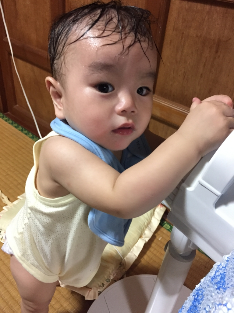 f:id:oki-umeboshi:20160907013614j:plain