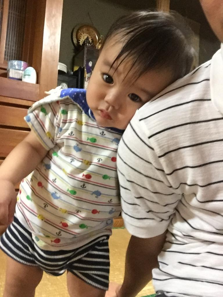 f:id:oki-umeboshi:20161018231503j:plain