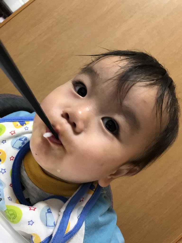 f:id:oki-umeboshi:20161201011257j:plain