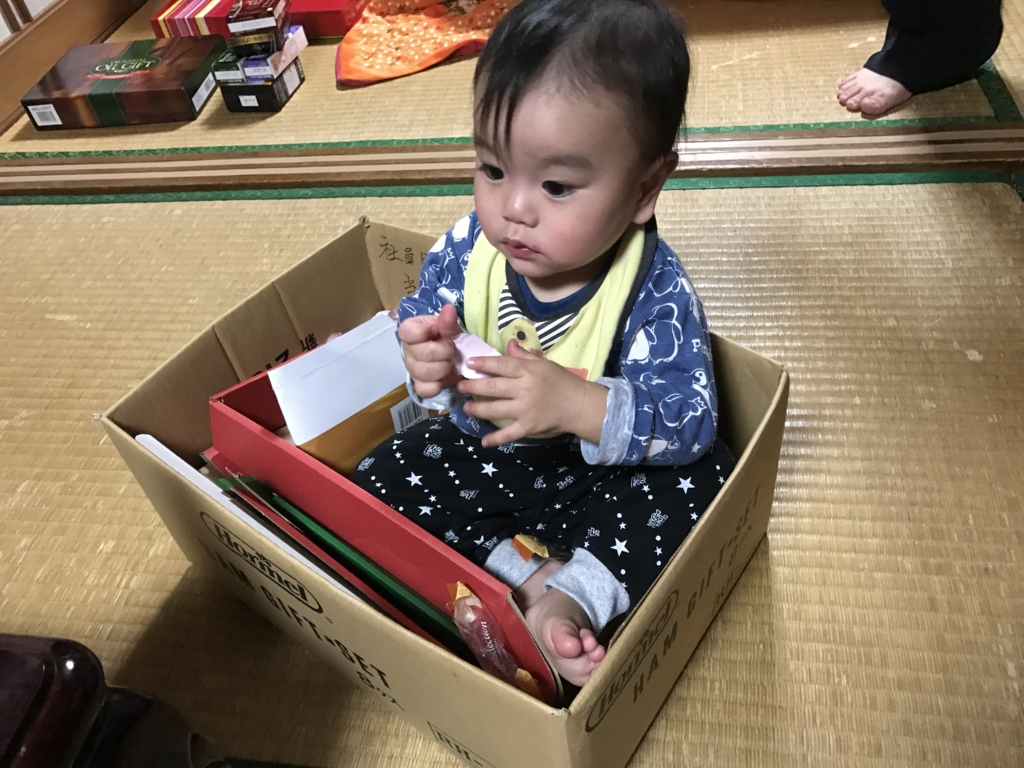 f:id:oki-umeboshi:20170108020446j:plain