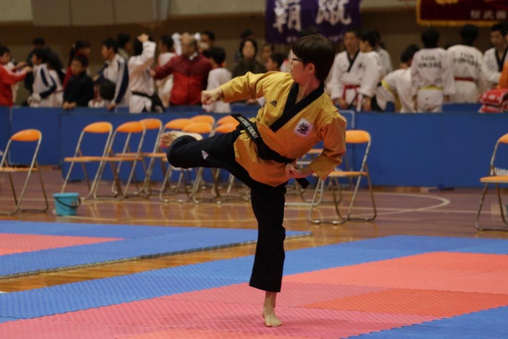 f:id:okina_monkparakeet:20170117113023j:plain