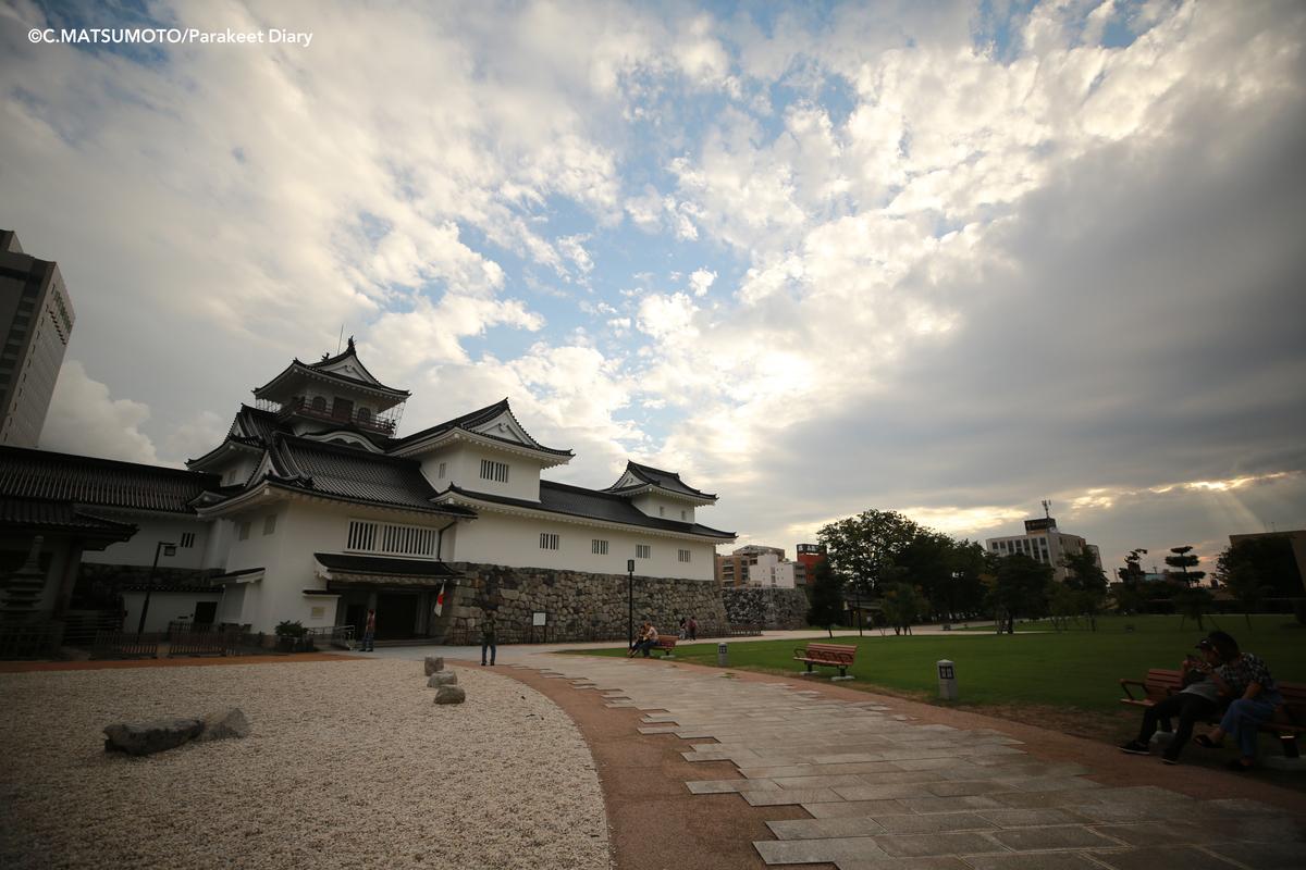 f:id:okina_monkparakeet:20200528195621j:plain