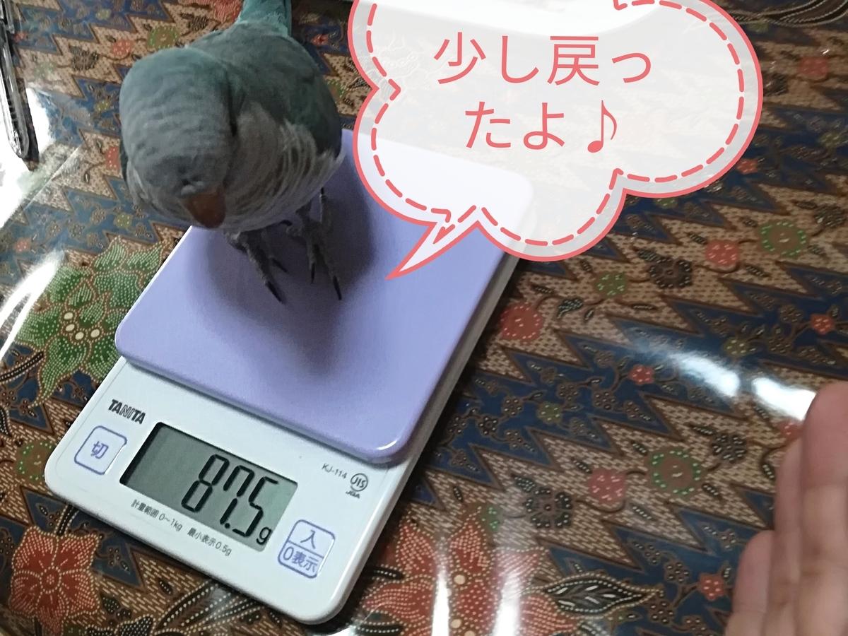 f:id:okinan181025:20190814230401j:plain