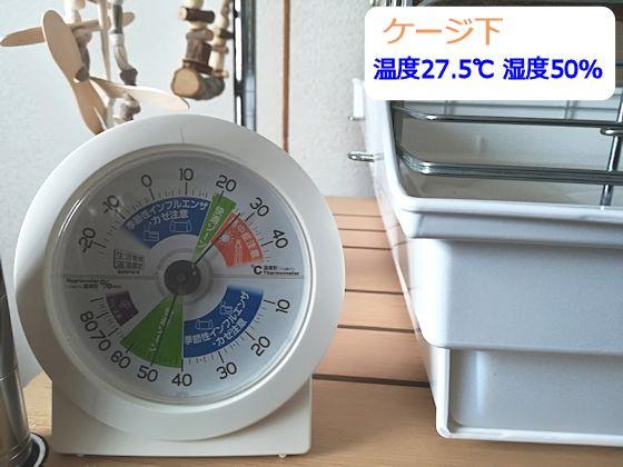 f:id:okinan181025:20190831205920j:plain