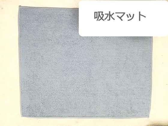 f:id:okinan181025:20190915220655j:plain