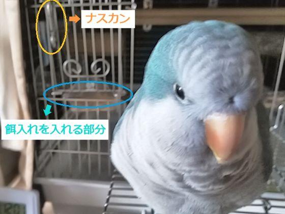 f:id:okinan181025:20191220231808j:plain
