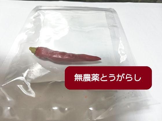 f:id:okinan181025:20200130224623j:plain