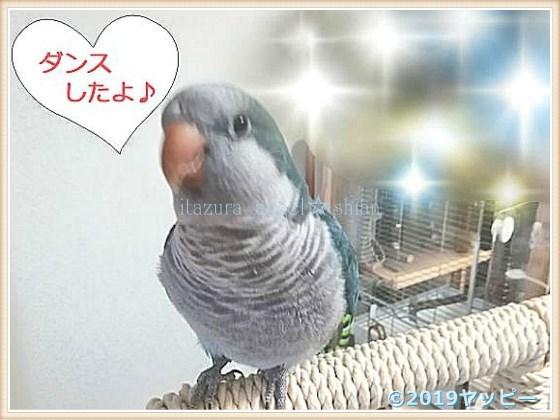 f:id:okinan181025:20201008020018j:plain