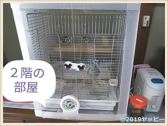 f:id:okinan181025:20201011003104j:plain