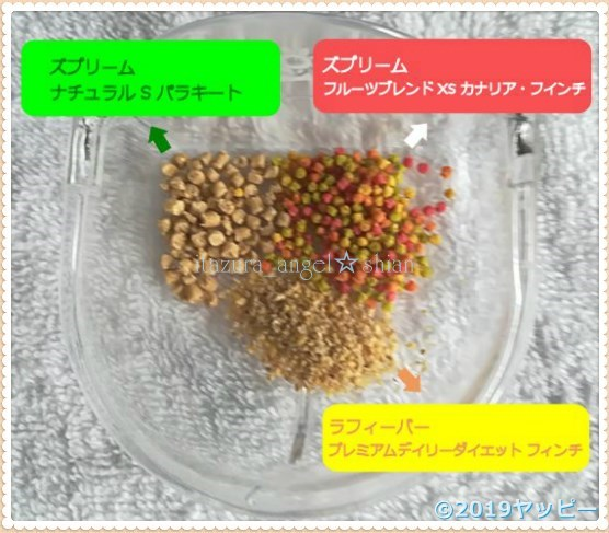 f:id:okinan181025:20201015235033j:plain