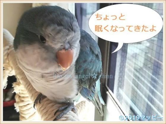 f:id:okinan181025:20201021030014j:plain