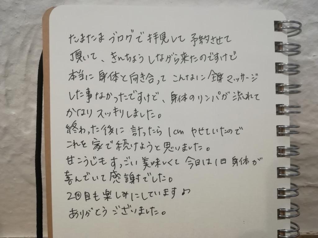 f:id:okinao5:20171112152032j:plain