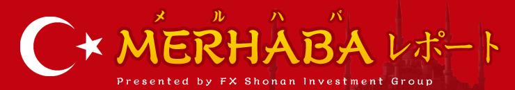 f:id:okinawa-support:20191112092441p:plain