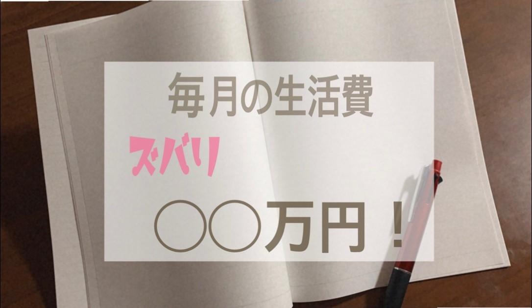 f:id:okinawa385:20201120225811j:plain