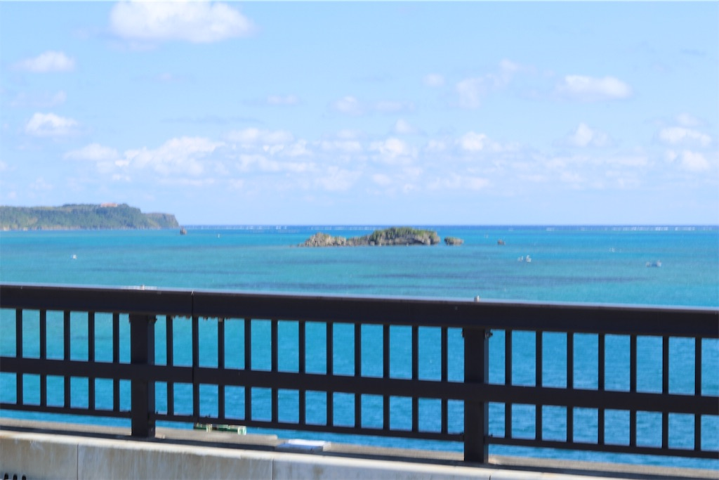 f:id:okinawa_peninsula:20170130201735j:image