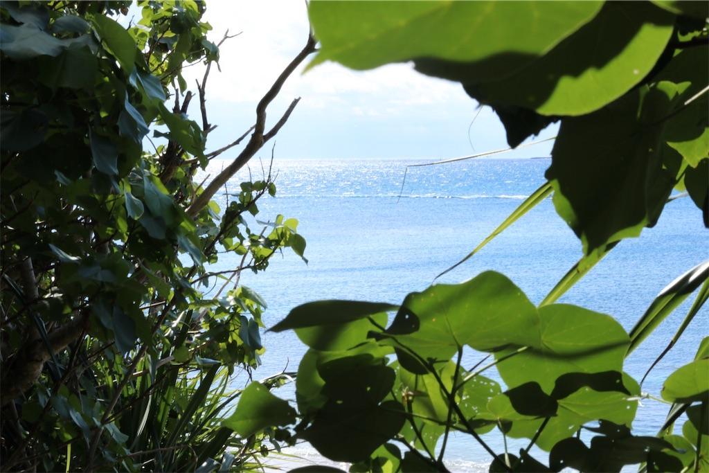 f:id:okinawa_peninsula:20170130201750j:image