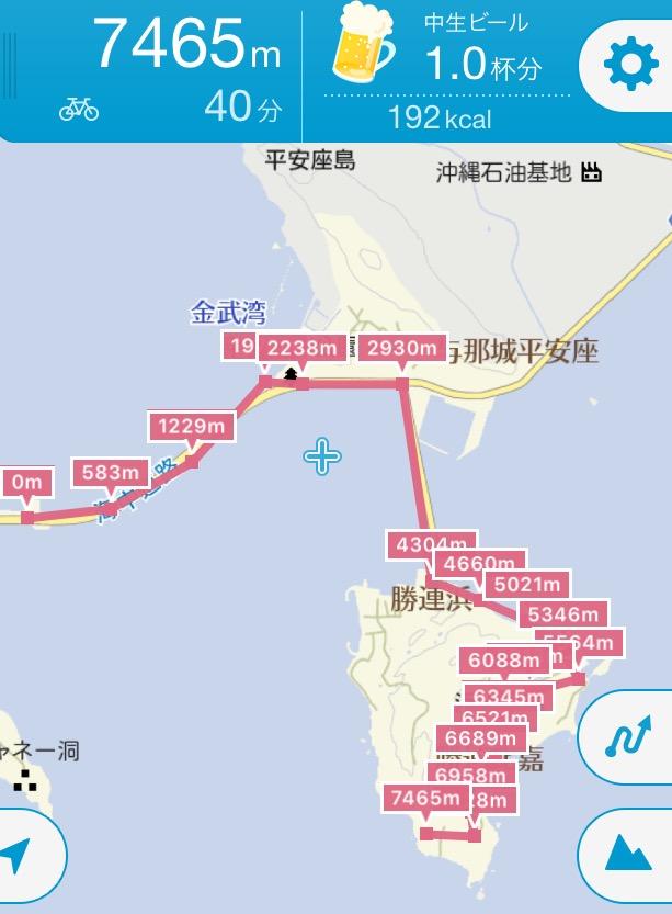 f:id:okinawa_peninsula:20170130202704j:plain