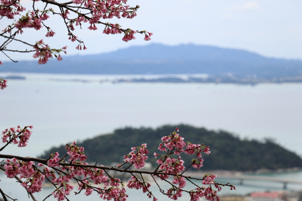 f:id:okinawa_peninsula:20170206232323j:plain