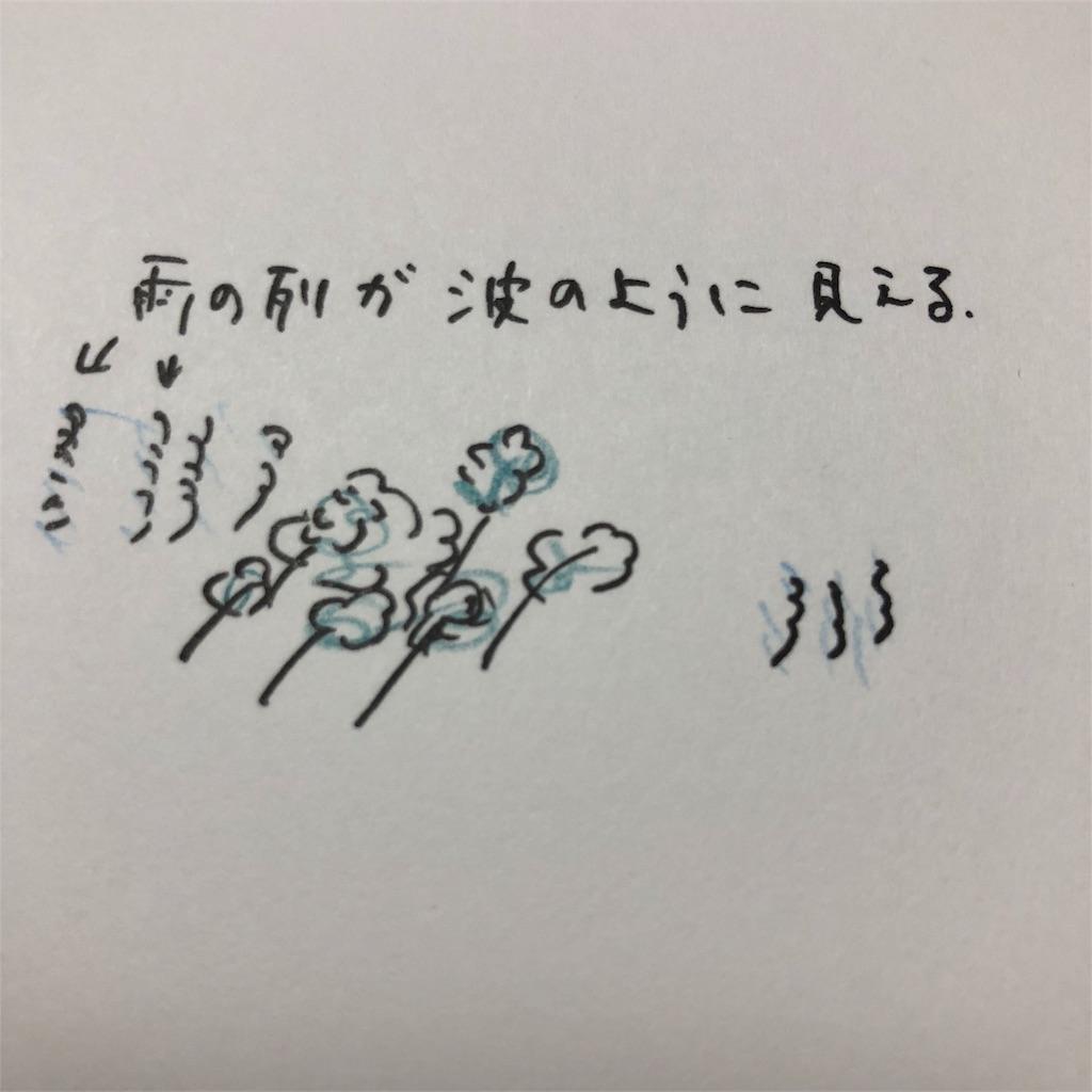 f:id:okinawacats:20180929074419j:image