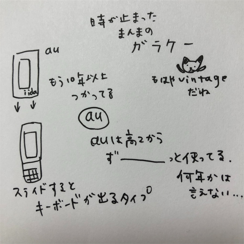 f:id:okinawacats:20180930102228j:image
