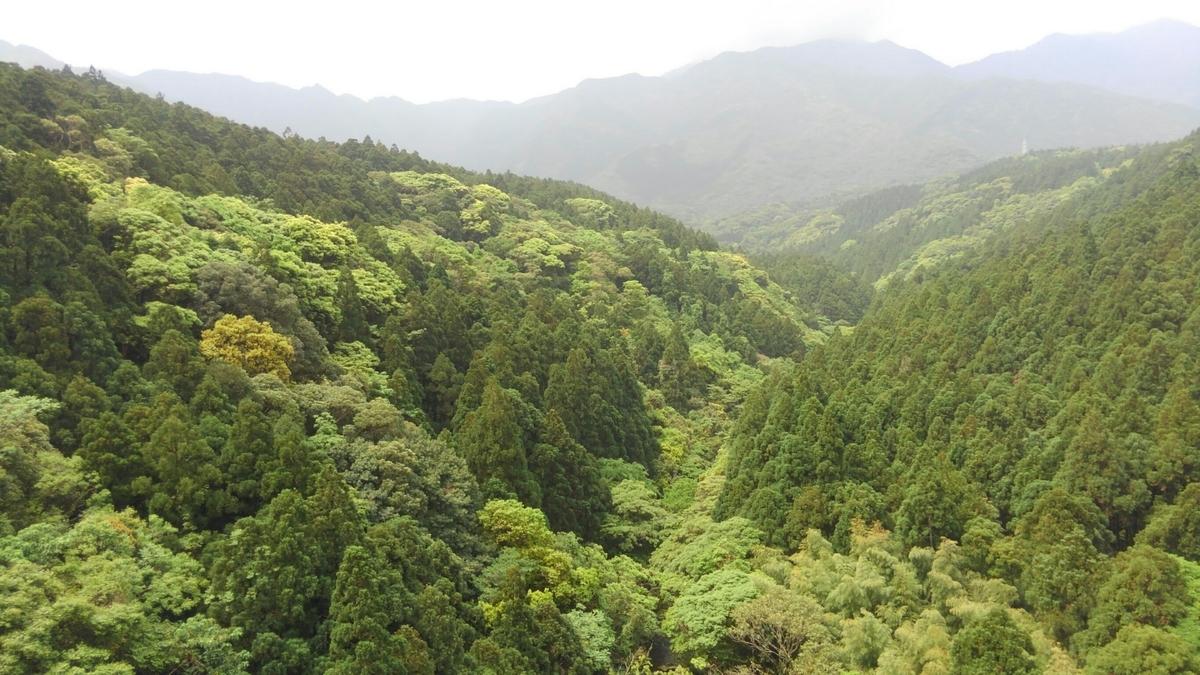 f:id:okinawajinsei:20200322110235j:plain
