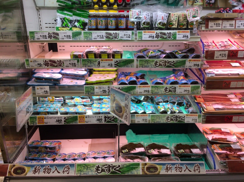 f:id:okinawanko:20170404133905j:plain