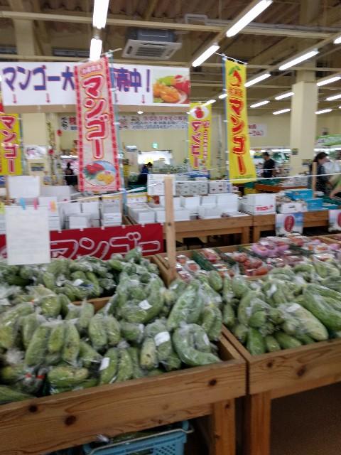 f:id:okinawaok:20170731102158j:image