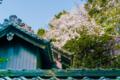 [SEL35F1.8OSS][Art][風景]桜と屋根