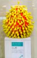 [美術][織り目の在りか 現代][SEL35F1.8OSS]三上 俊希:呼吸シリーズ