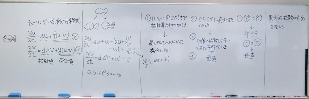 f:id:okiraku894:20181217140816j:plain