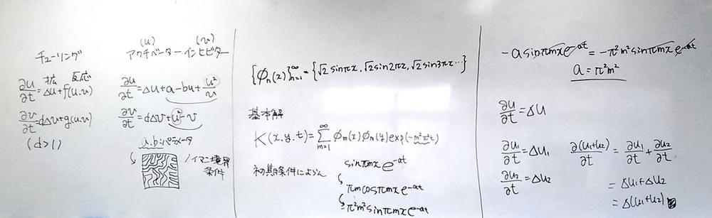 f:id:okiraku894:20190304141440j:plain